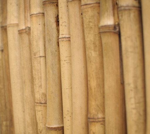 Бамбукові кілочки